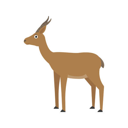 Gazelle Dorcas icon in flat style, african animal vector illustration