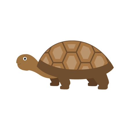 Spurred Tortoise icon in flat style, african animal vector illustration