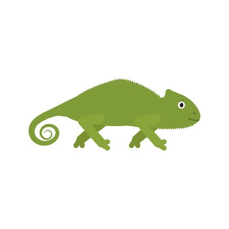 Chameleon icon in flat style, african animal vector illustration