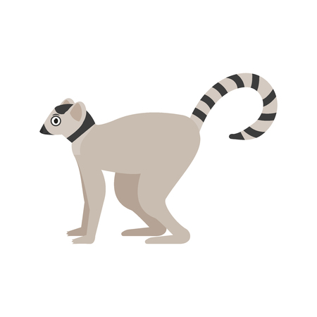 Lemur icon in flat style, african animal vector illustration