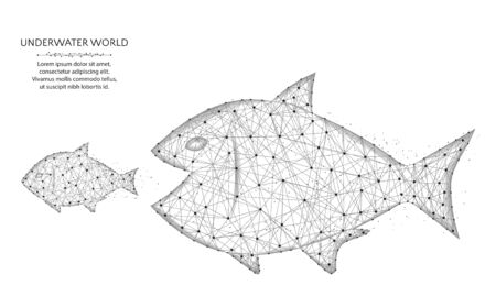 Big fish eat small low poly design, predator and prey in polygonal style, underwater world wire frame vector illustration on a white background Ilustração