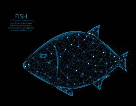 Fish low poly model, animal in polygonal style, underwater world wireframe vector illustration made from points and lines on a black background