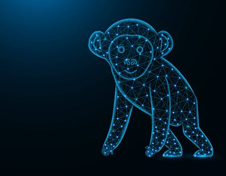 A monkey low poly model, African animal abstract graphics, primate polygonal wireframe vector illustration on dark blue background