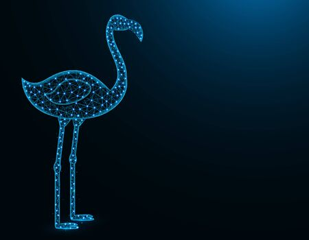 Flamingo low poly model, African animal abstract graphics, bird polygonal wireframe vector illustration on a dark blue background