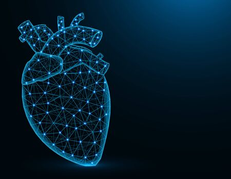 Heart with aorta and veins low poly model, human organs abstract graphics, anatomy polygonal wireframe vector illustration on dark blue background