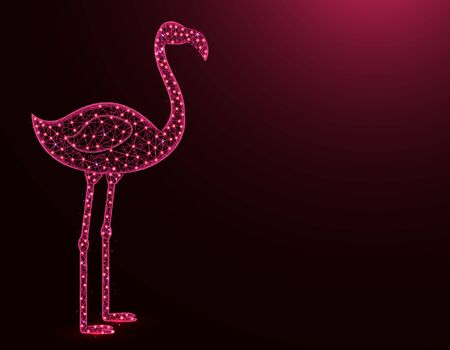 Flamingo low poly model, African animal abstract graphics, bird polygonal wireframe vector illustration on a dark pink background