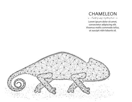 Lizard chameleon low poly design, African animal abstract graphics, reptile polygonal wireframe vector illustration made from points and lines on a white background
