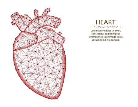 Heart with aorta and veins low poly design, human organs abstract graphics, anatomy polygonal wireframe vector illustration made from points and lines on a white background