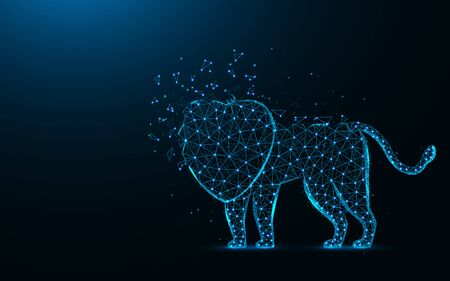 Lion low poly design, African animal abstract geometric image, wild cat wireframe mesh polygonal vector illustration made from points and lines on dark blue background