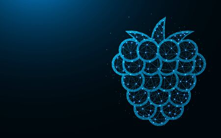 Raspberries low poly design, fruit abstract geometric image, berries wireframe mesh polygonal vector illustration made from points and lines on dark blue background