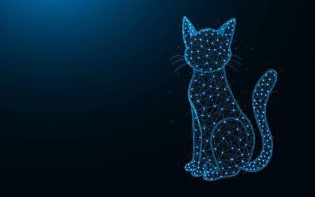 Cat low poly design, animal abstract geometric image, pet wireframe mesh polygonal vector illustration made from points and lines on dark blue background
