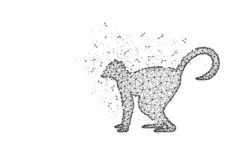 Lemur low poly design, African animal abstract geometric image, zoo wireframe mesh polygonal vector illustration made from points and lines on white background Ilustrace