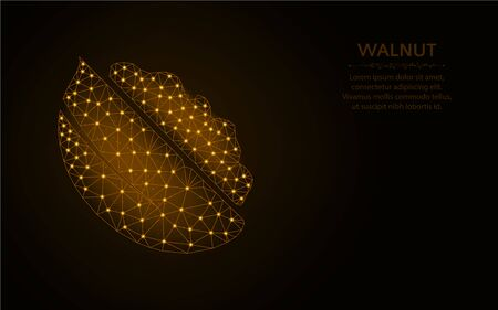 Walnut low poly design, fruit wireframe mesh polygonal vector illustration made from points and lines on dark brown background