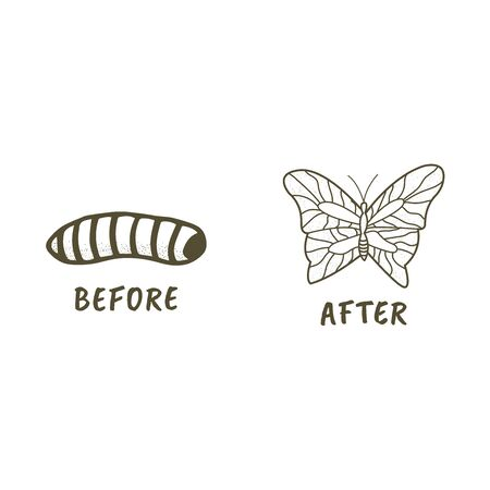 Larva and Butterfly hand drawn style