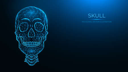 Polygonal vector illustration of a human skull, front view. Low poly anatomical model of the skull and cervical spine on dark blue background.