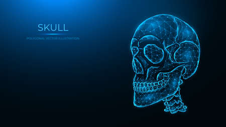 Polygonal vector illustration of a human skull, side view. Low poly anatomical model of the skull and cervical spine on dark blue background.