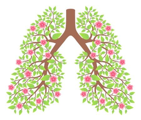 longen gezond Vector Illustratie
