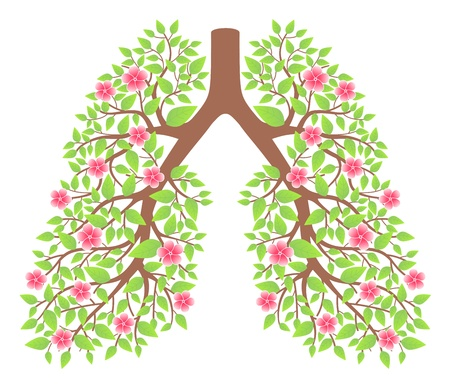 tobacco plants: lungs healthy