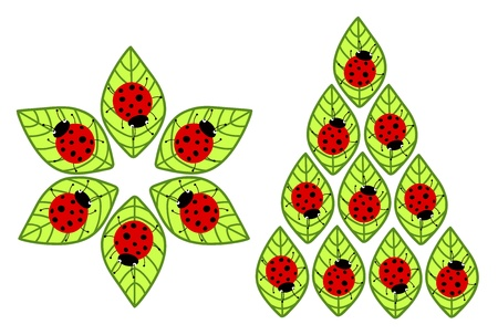 ladybugs on leaves Vector