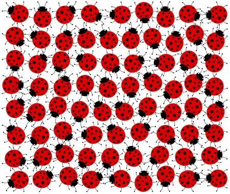 ladybugs Stock Vector - 18826679