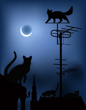 dreams of city: сats on the roofs in the night sky Illustration