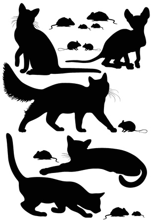avoiding: cats silhouettes Illustration