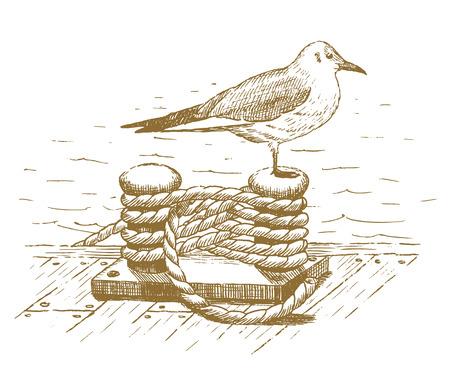 dock: Seagull sitting on a bollard drawn by hand Illustration