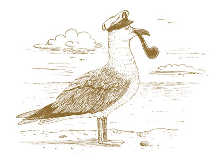 Seagull captain drawn by hand