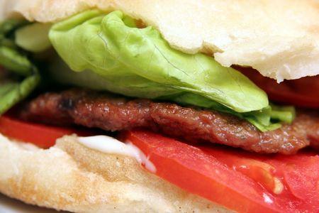 fatten: grilled meat patty, hamburger
