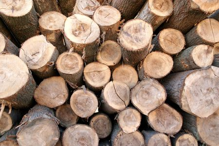 details pile of wood, storage Stock Photo - 726684