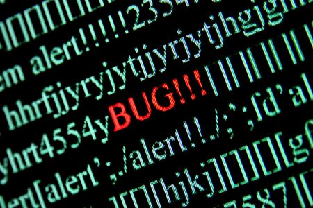 find fault: Computer bug on a screen