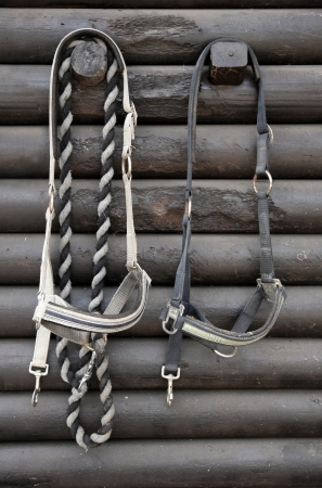 head collar: Details of diversity used horse reins, background the log cabin