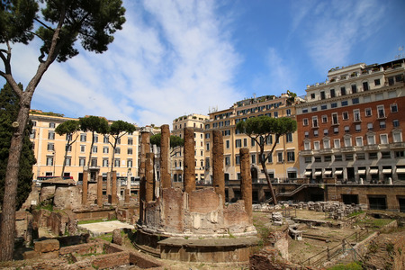 archaeological: archaeological area of Largo di Torre Argentina in Rome, Italy
