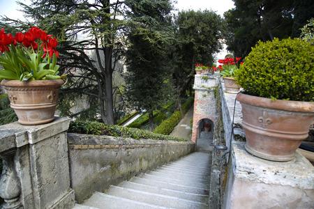 fountain: Villa d`Este fountain and garden in Tivoli near Roma, Italy