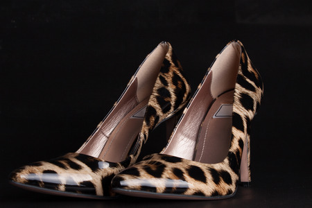 black style ,elegant woman shoes, leopard skin.