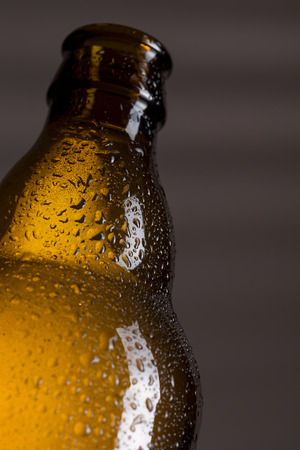 brewery: Close up of a wet, well-chilled beer bottle. Selective focus