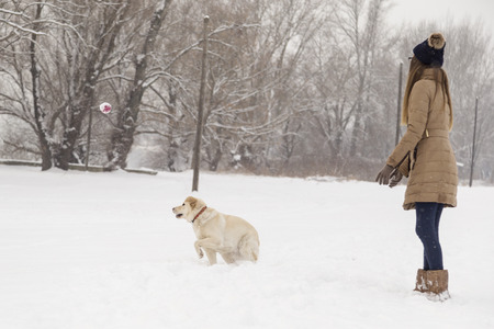 Beautiful young woman playing throw and catch the ball with her dog in the snow. Focus on the dog and the ball Stock Photo