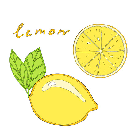 citric: Lemon with leaf and lemon slice. isolated fruit