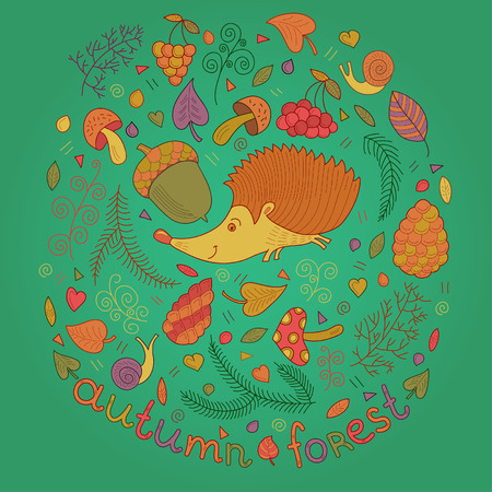 Autumn forest set in vector. Hedgehog leafs branches berries mushrooms cones and snail in cartoon style Vector