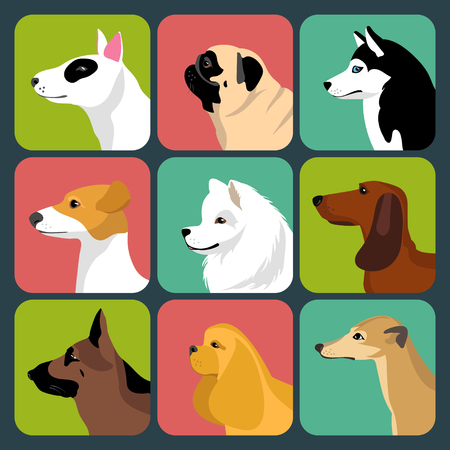 samoyed: Vector set of different dogs icons in trendy flat style.