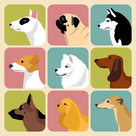 charles: Vector set of different dogs icons in trendy flat style.