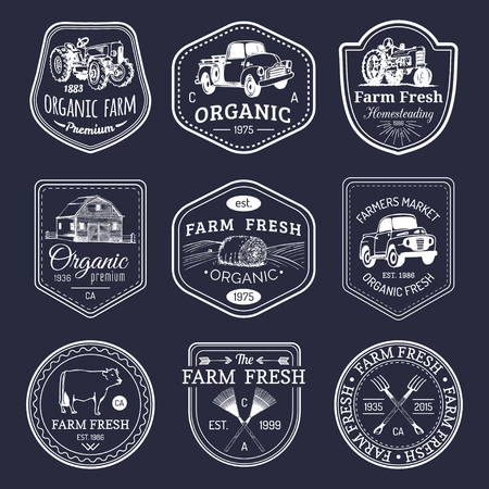 logotypes: Vector retro set of farm fresh logotypes. Vintage labels with hand sketched agricultural equipment illustrations.