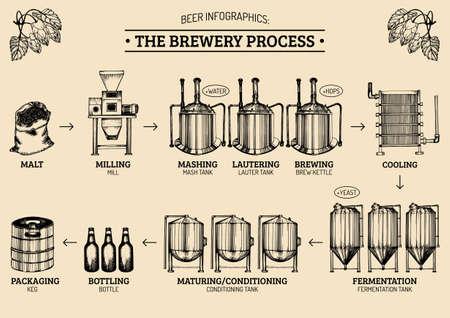 Infografía de la cerveza del vector con las ilustraciones del proceso de la cervecería. Ale producir el diseño. La producción de Lager esbozó esquema.