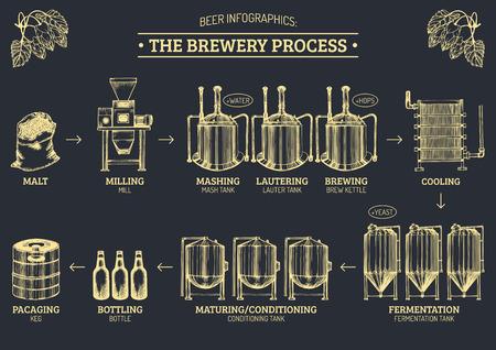 Infographics della birra di vettore con le illustrazioni del processo della fabbrica di birra. Ale produce design. Schema di sketch di produzione Lager.