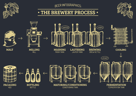 Vector beer infographics with illustrations of brewery process. Ale producing design. Lager production sketched scheme. Reklamní fotografie - 75335288