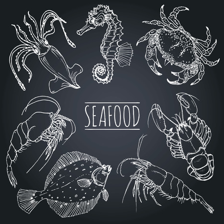 plaice: Vector vintage seafood sketches collection. Hand drawn fish illustrations for restaurant, cafe menu, market ad. Illustration