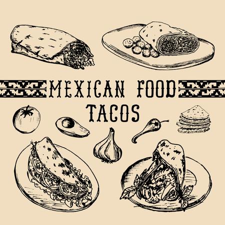 enchiladas: Mexican food menu in vector. Burritos, nachos, tacos illustrations. Hipster snack bar, fast-food restaurant icons.