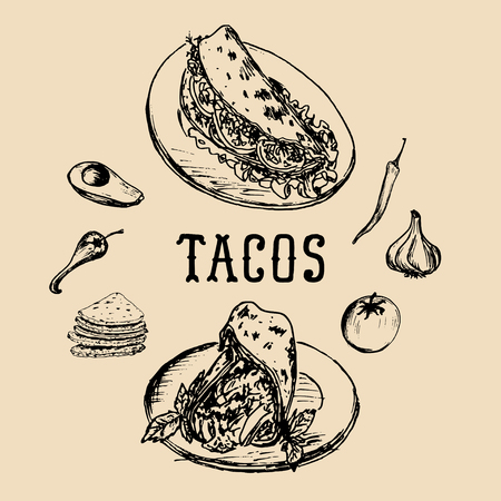 enchiladas: Tacos menu in vector. Tacos illustrations. Vintage hand drawn Mexican quick meals collection.Fast-food restaurant icons.