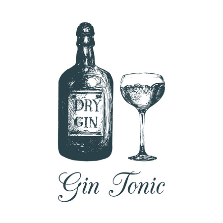 手は、ジンのボトルとグラスをスケッチしました。アルコール飲料を描画します。カフェ、バーのメニューの伝統的なカクテルのベクトル イラスト 写真素材 - 77830513