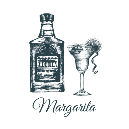 Hand sketched tequila bottle and margarita glass.Alcoholic drink set drawing.Vector illustration of traditional cocktail Illustration